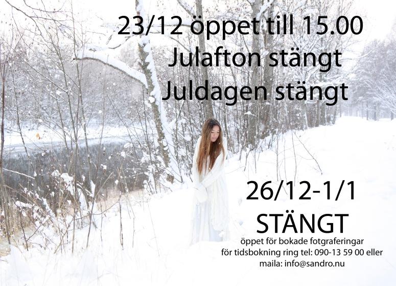 14691_099_jultider