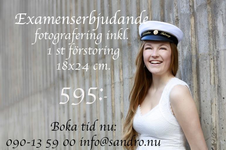 15174_134_10161_t4z_isberg